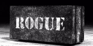 Rogue: Equipment Supplier of the CrossFit Games